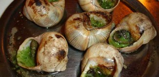 Out Gathering Snails Jokes Times