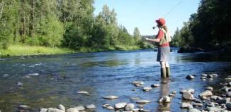 Fishing License Jokes Times