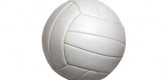 Volleyball Court Jokes Times