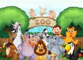 Zoo Trip Jokes Times